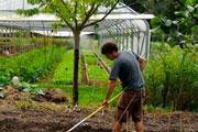 errine Hervé-Gruyer et son mari font la preuve que la permaculture est un modèle agricole efficace